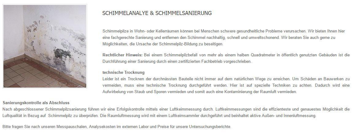 Schimmel_sanieren