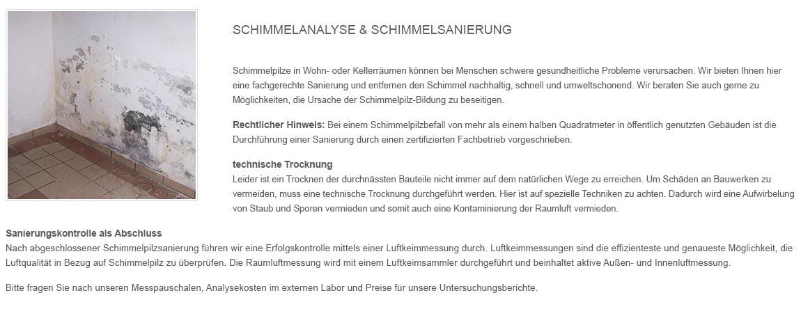 Schimmel_sanieren in  Ellerbek